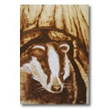 Copperman Box Didgeridoo - Badger 04